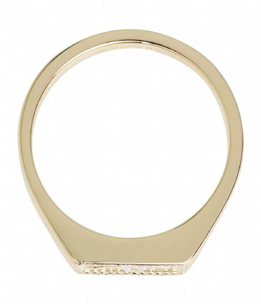 CLUSE Ring Force Tropicale Signet Rectangular Ring gold plated (CLJ41012)