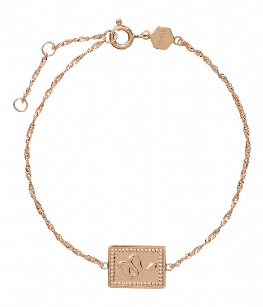 CLUSE Armband Force Tropicale Twisted Chain Tag Bracelet rose gold plated (CLJ10022)