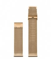 CLUSE Strap Mesh 20 mm Gold colored (CS1401101062)