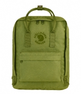 Fjallraven Re-Kanken spring green (607)