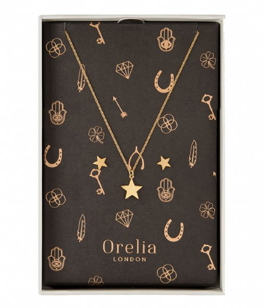 Orelia Oorbellen Brushed Star Giftbox gold plated (22390)
