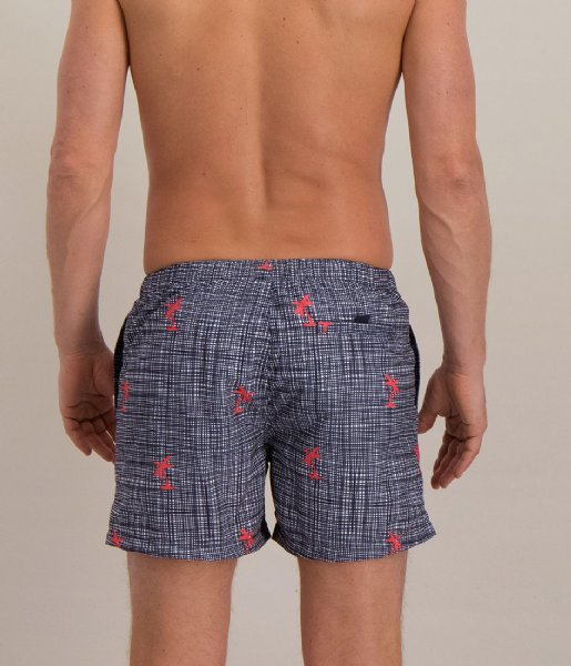 Shiwi Zwembroek Swim Short Modern Check Palm fluo red