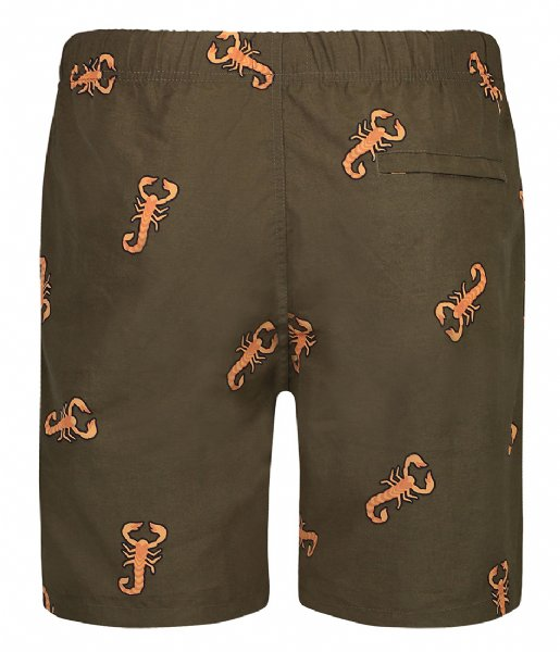 Shiwi Zwembroek Men Swim Short Scorpion seaturtle green