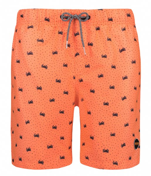 Shiwi Zwembroek Men Swim Short Crabby juicy orange