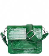 HVISK Cayman Pocket green (010)