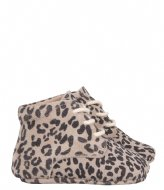 Little Indians Bootie High Top Small Leopard Taupe