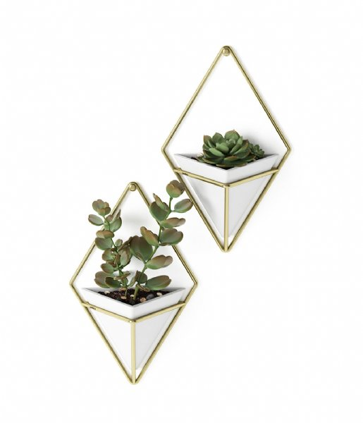 Umbra Decoratief object Trigg Wall Display -2 White/Brass (524)
